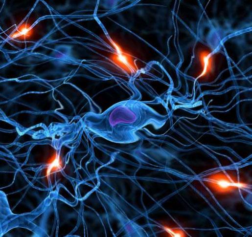 Проблемы со сном могут влиять на физиологию головного мозга человека